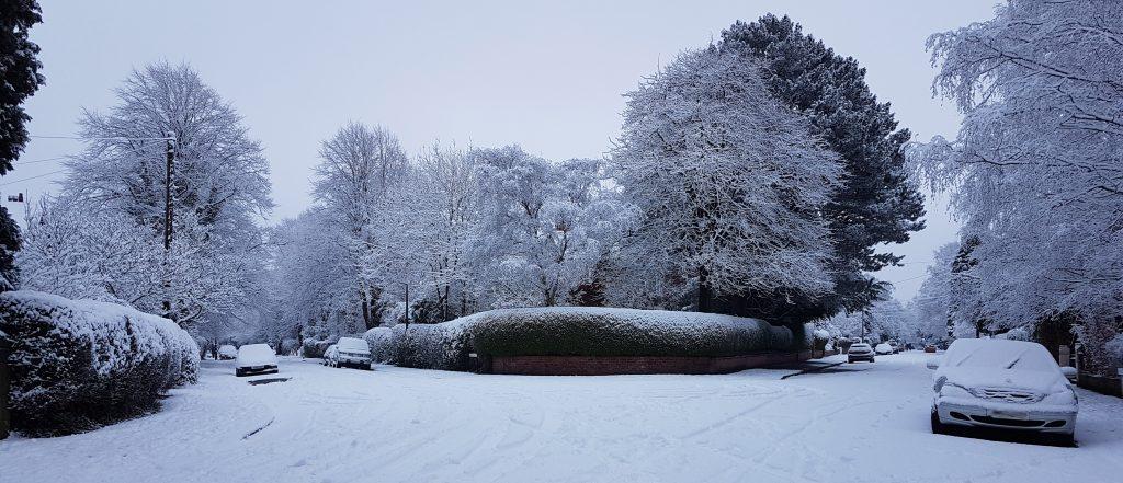 DPP snowy day in January