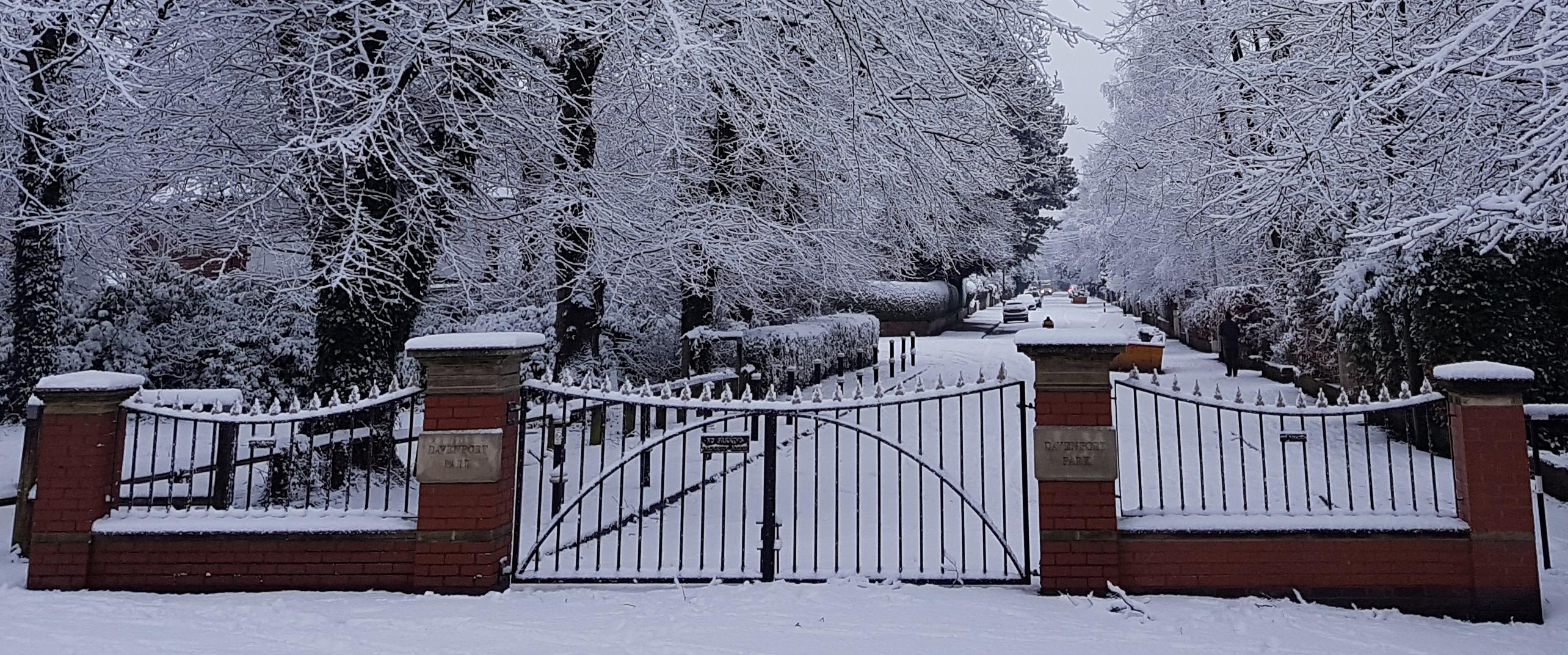 DPP-Gates-snow
